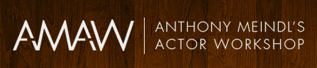 AMAW | Antohony Meindl's Actor Workshop